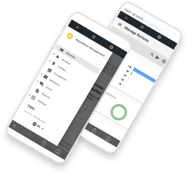 Review and Reputation Management Scores on a phone